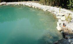 Jetzt ist der Teich noch trüb